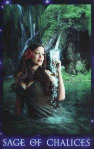 Sage of Chalices-Sirian Starseed
