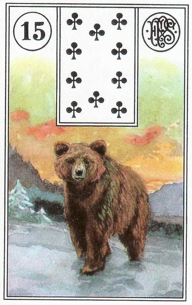 Карта Медведь в Ленорман