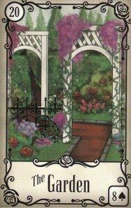 garden-under the roses