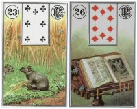 mice book-piatnik