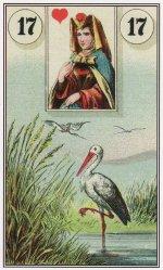 stork-dondorf lenormand