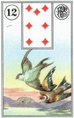 Birds-Piatnik