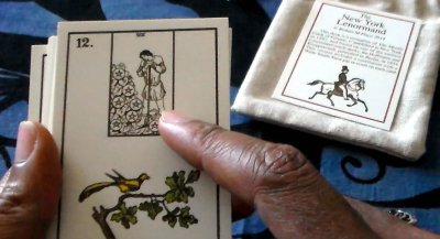 Getting my hands on the New York Lenormand--with Tarot card inserts--gave me an idea for this week's reading.