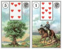tree rider-piatnik