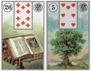 book-tree-piatnik
