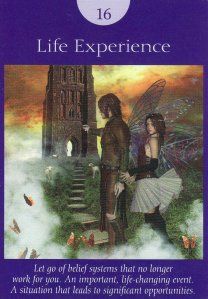 life experience-fairy tarot