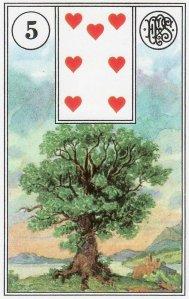 tree-piatnik