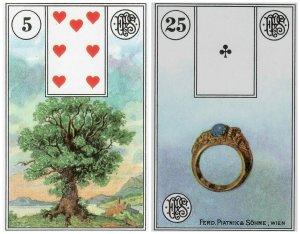 tree-ring-piatnik