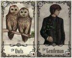 owls gentleman-under the roses