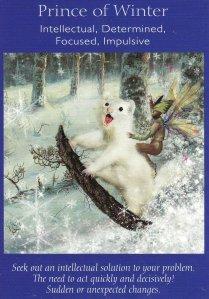 prince of winter-fairy tarot