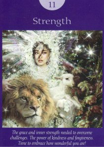 strength-fairy tarot