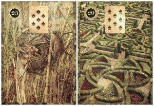 mice and garden-malpertuis
