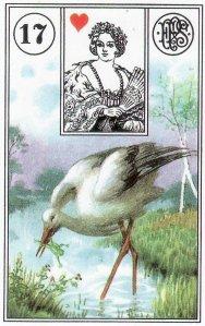 Stork-Piatnik