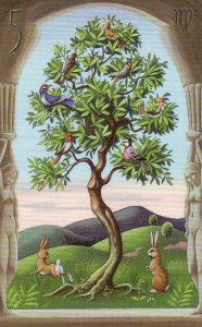 tree-mystical
