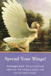 Spread Your Wings!, from the Archangel Oracle Cards. Art by James Yale.